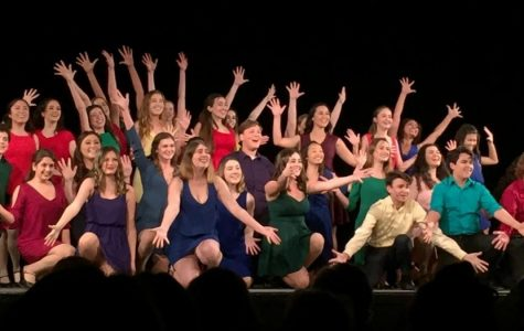 Sea Kings exhibited their dancing, singing, and acting ability at the 2018 PVHS Musical Showcase